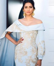 Sonam Kapoor Looks Fabulous in Dramatic Ralph and Russo Gown